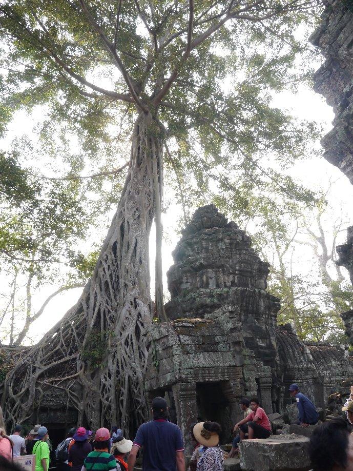 Cambodia001